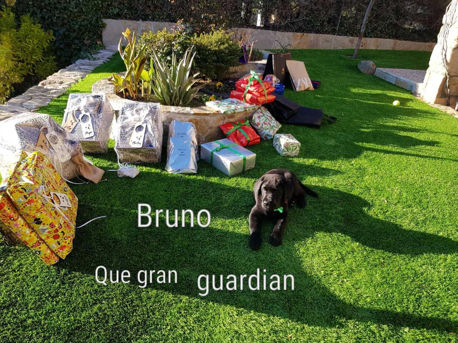 Bruno, guardando los regalitos de sus Magestades Los Rryes Magos.