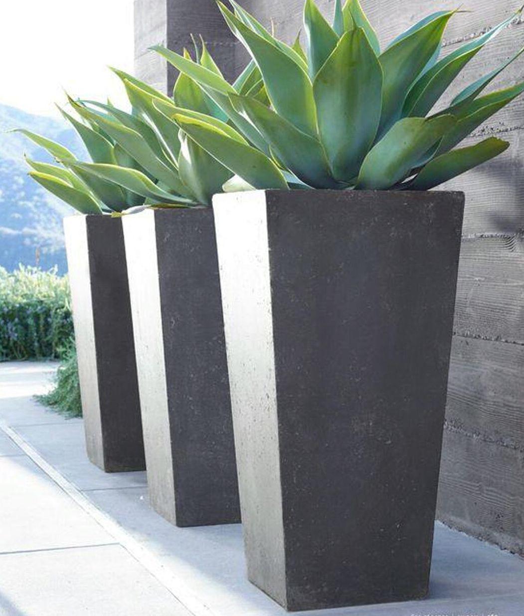 Foto 371 de Diseño y mantenimiento de jardines en  | Ches Pa, S.L.