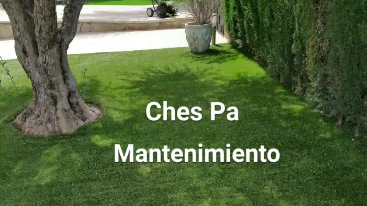 Mantenimiento césped artificial Ches Pa }}