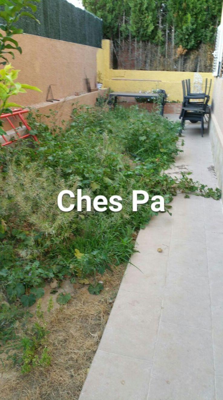 Proyecto Ches Pa. Antes en vivienda particular en Valencia