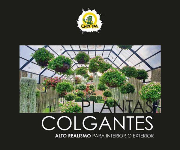 Plantas colgantes: ¿Qué hacemos? de Ches Pa, S.L.