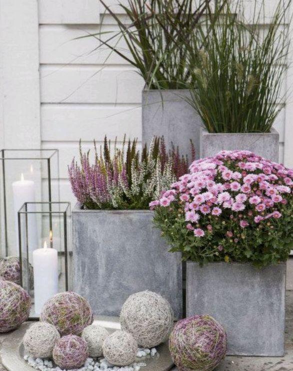 Foto 344 de Diseño y mantenimiento de jardines en  | Ches Pa, S.L.