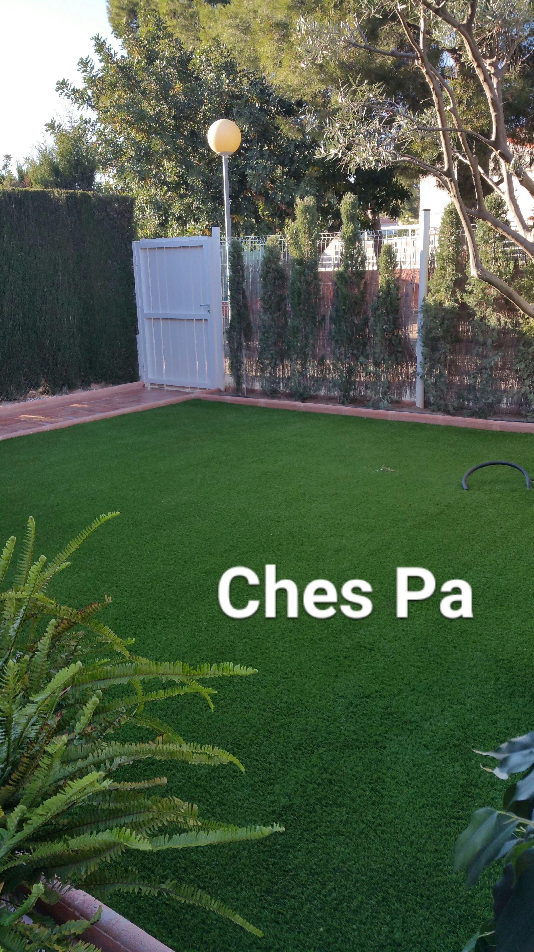 Foto 612 de Diseño y mantenimiento de jardines en Valencia | Ches Pa, S.L.