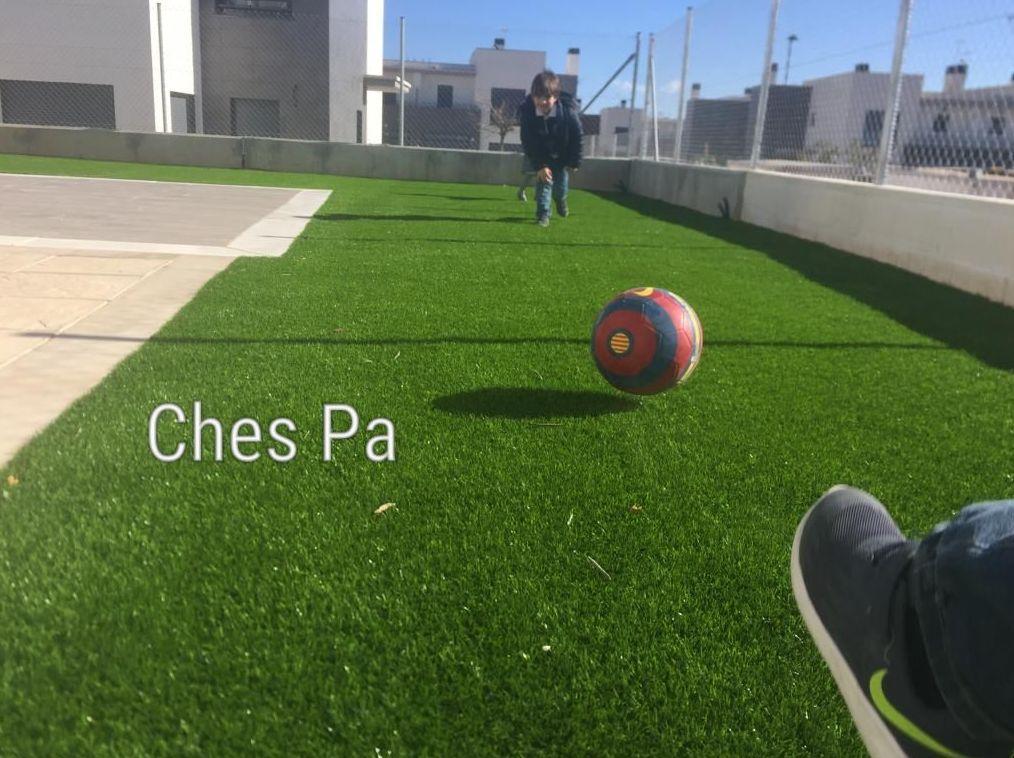 Proyecto jardín con césped artificial en Valencia