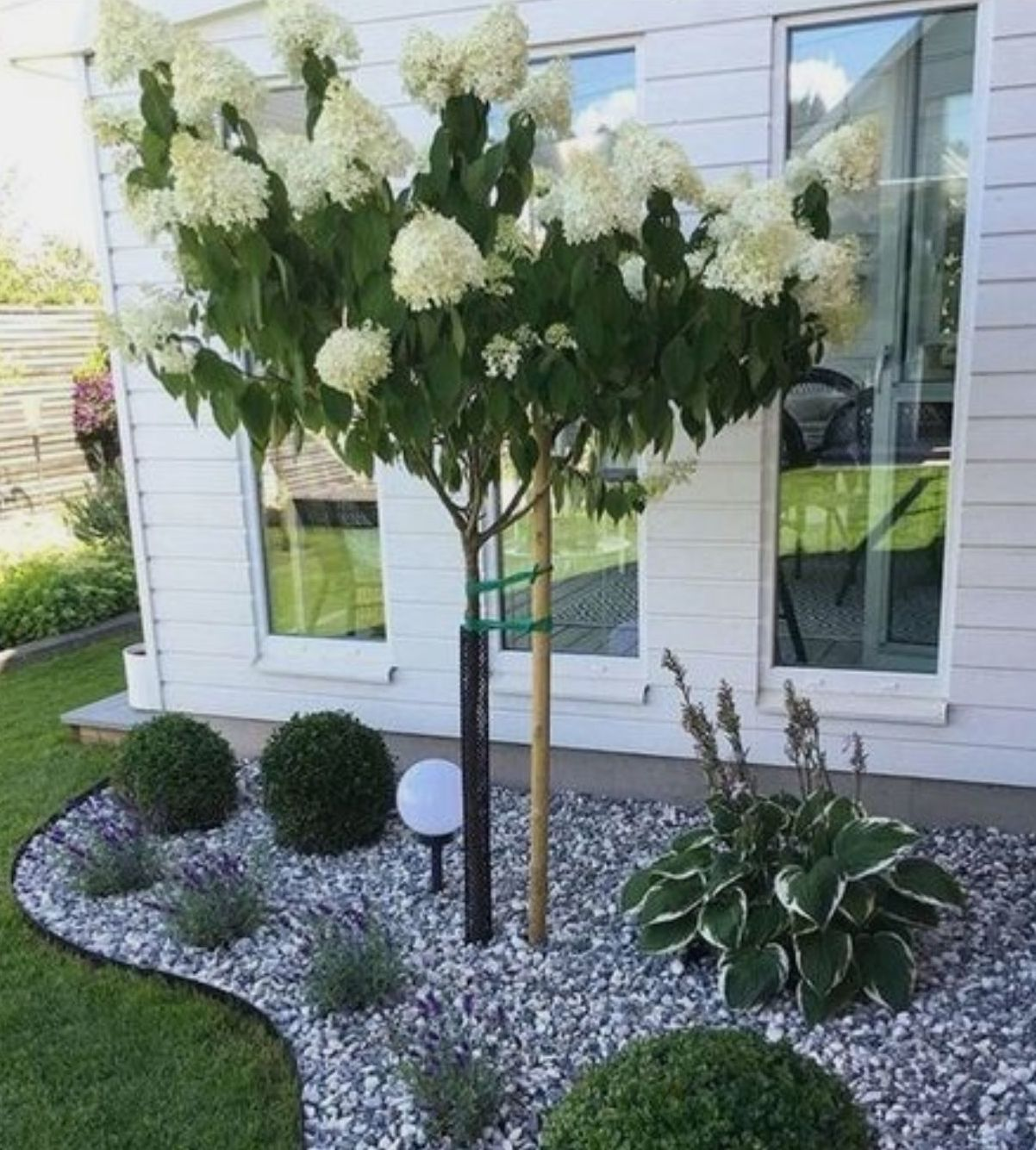 Foto 263 de Diseño y mantenimiento de jardines en  | Ches Pa, S.L.