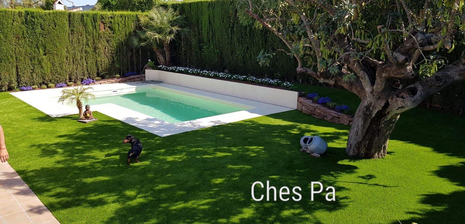 Proyecto integral paisajismo, diseño, piscina, césped artificial, plantas, luz, riego y además en jardín particular en Valencia