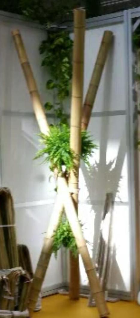 Foto 385 de Diseño y mantenimiento de jardines en  | Ches Pa, S.L.