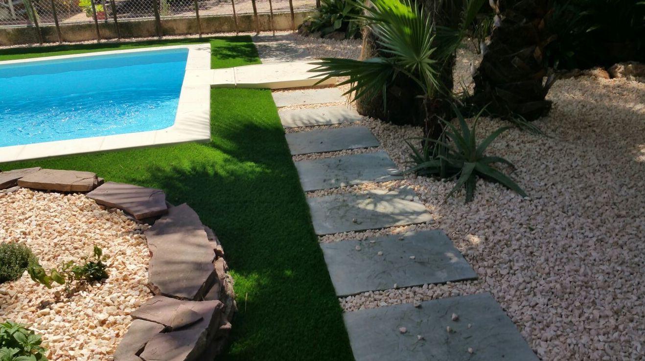 Foto 194 de Diseño y mantenimiento de jardines en Valencia | Ches Pa, S.L.