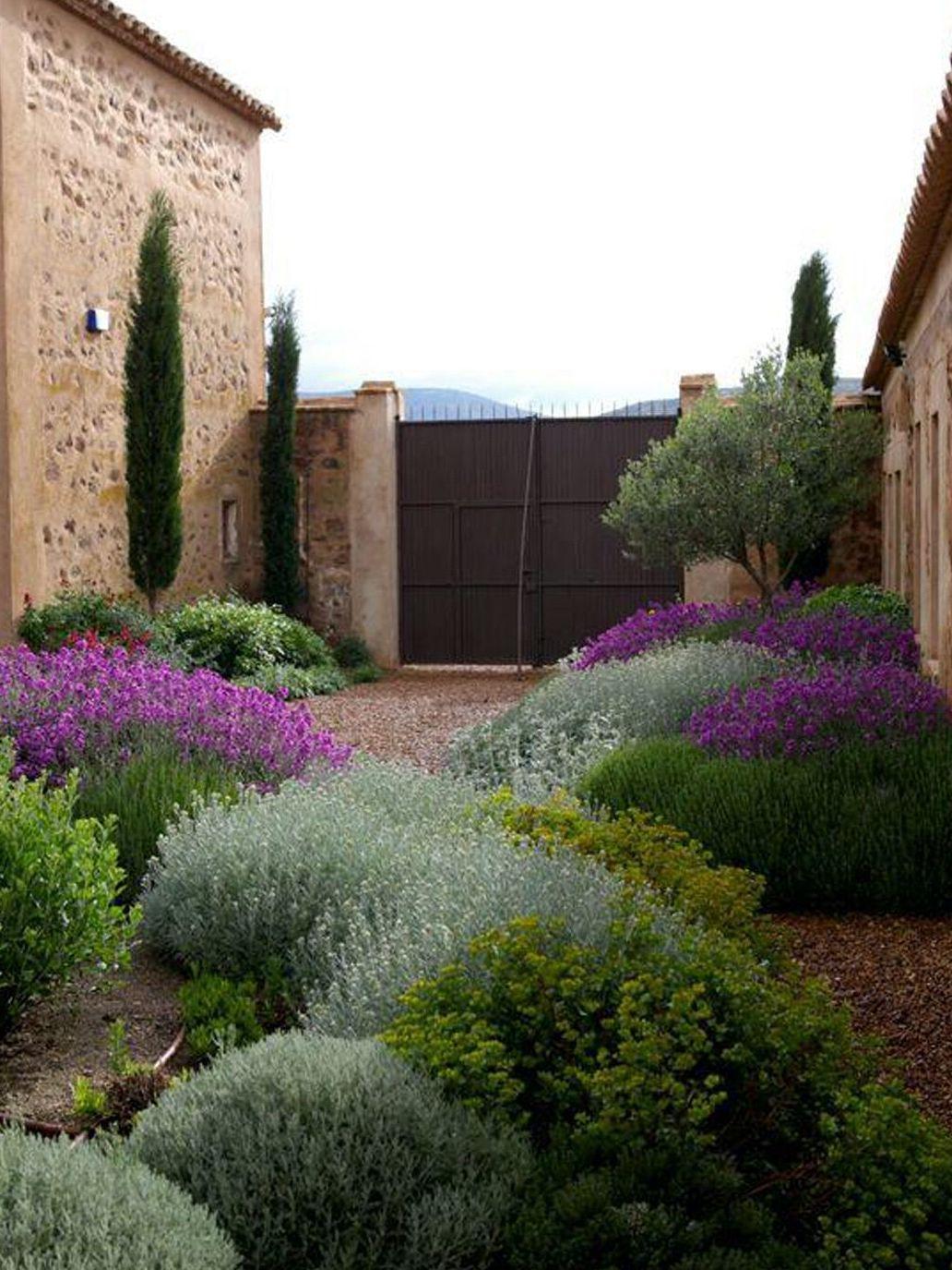 Foto 112 de Diseño y mantenimiento de jardines en Bétera | Ches Pa, S.L.