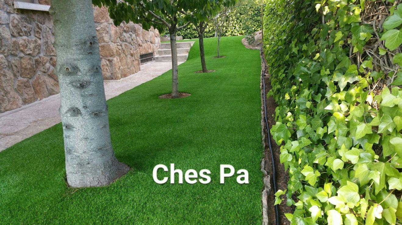 Foto 200 de Diseño y mantenimiento de jardines en  | Ches Pa, S.L.