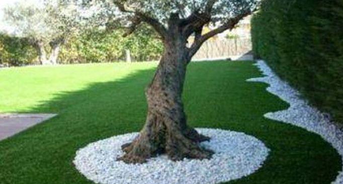 Foto 249 de Diseño y mantenimiento de jardines en Bétera | Ches Pa, S.L.