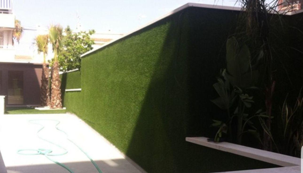 Foto 134 de Diseño y mantenimiento de jardines en Valencia | Ches Pa, S.L.