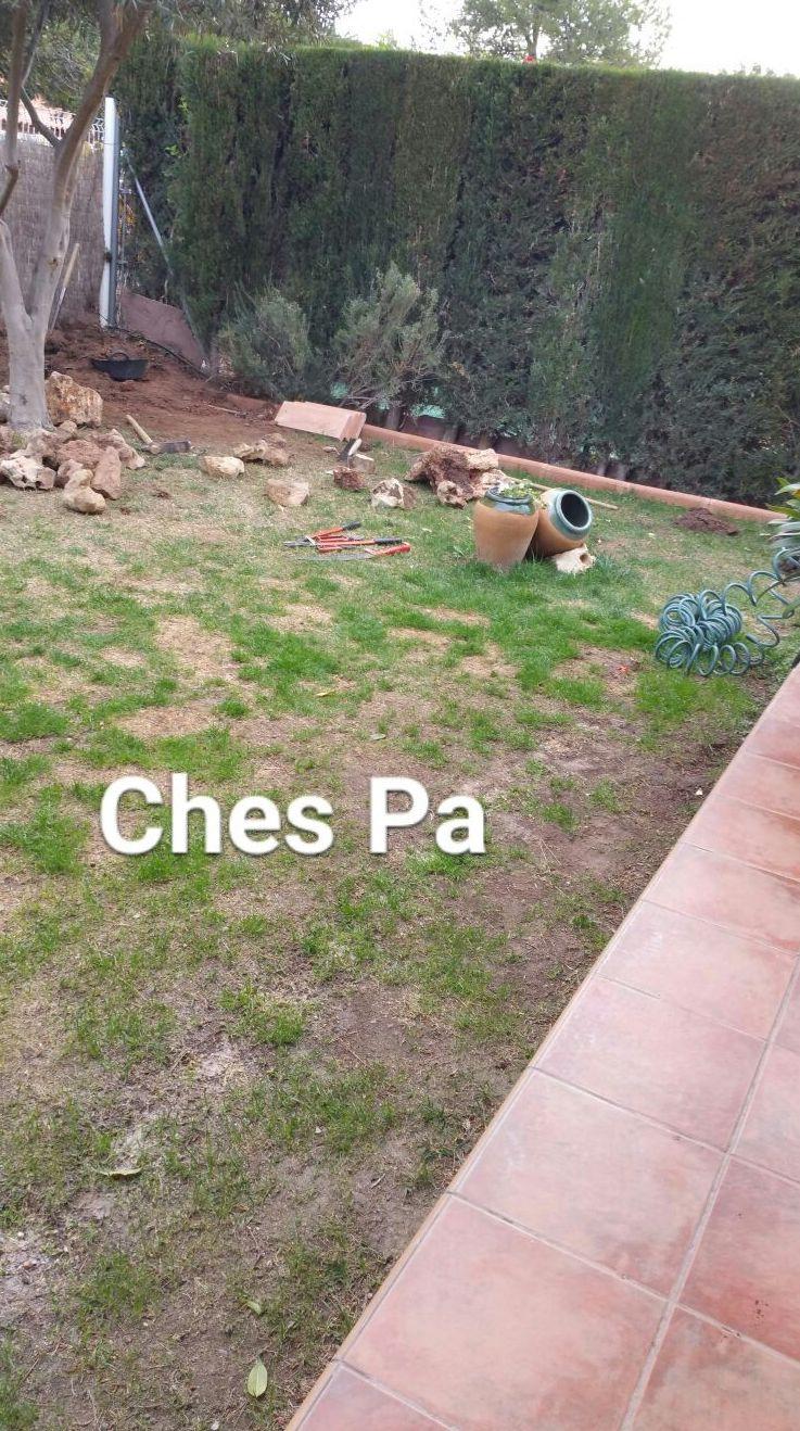 Foto 492 de Diseño y mantenimiento de jardines en  | Ches Pa, S.L.