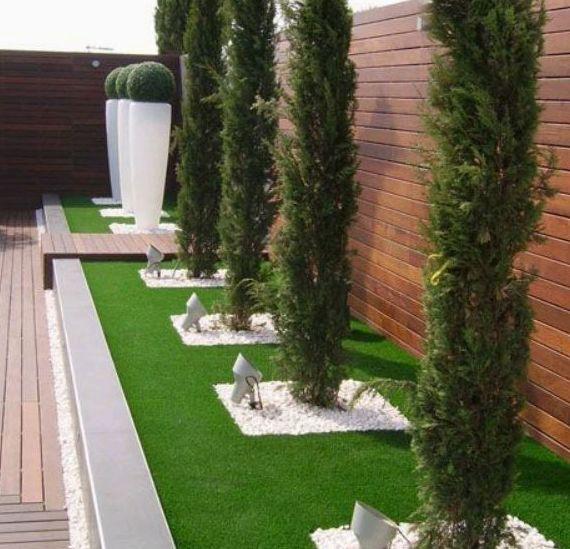 Foto 409 de Diseño y mantenimiento de jardines en Valencia | Ches Pa, S.L.