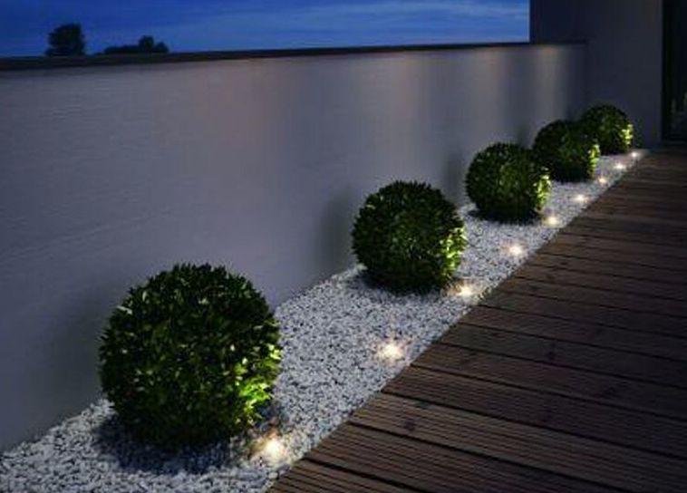 Foto 258 de Diseño y mantenimiento de jardines en Valencia | Ches Pa, S.L.