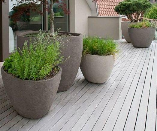 Foto 217 de Diseño y mantenimiento de jardines en Bétera | Ches Pa, S.L.