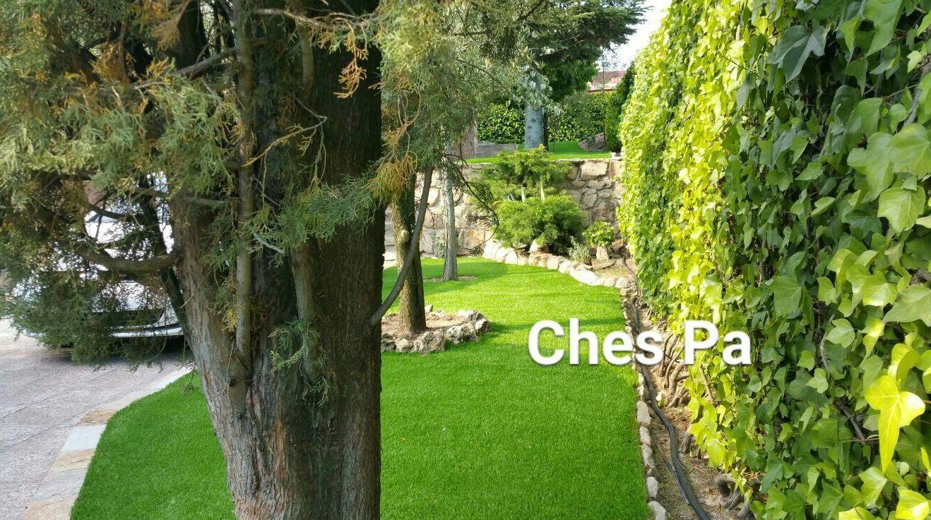 Foto 115 de dise o y mantenimiento de jardines en b tera ches pa s l - Paisajismo valencia ...