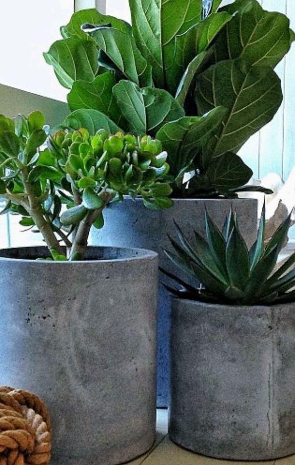 Foto 366 de Diseño y mantenimiento de jardines en  | Ches Pa, S.L.
