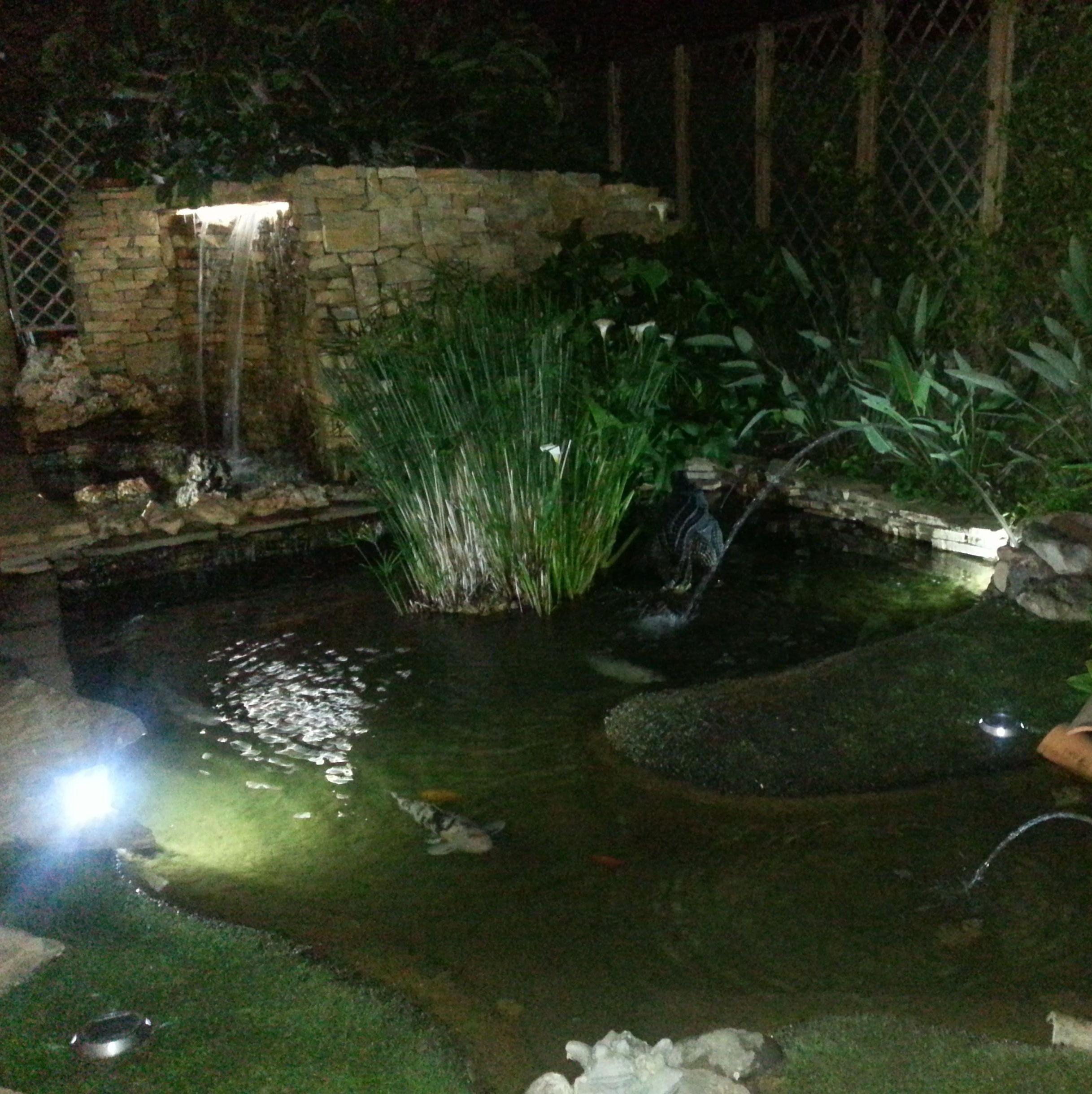 Proyecto Estanque Ches Pa en jardín particular Valencia.