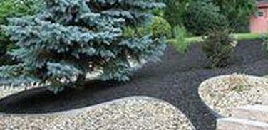 Foto 220 de Diseño y mantenimiento de jardines en Bétera | Ches Pa, S.L.