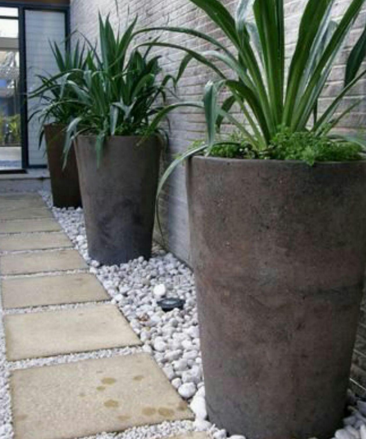 Foto 370 de Diseño y mantenimiento de jardines en  | Ches Pa, S.L.