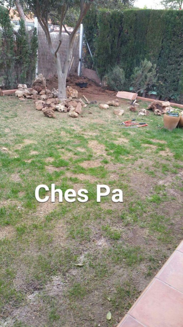 Foto 714 de Diseño y mantenimiento de jardines en  | Ches Pa, S.L.