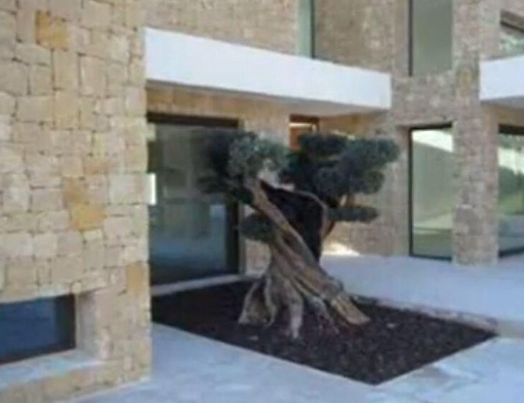 Foto 207 de Diseño y mantenimiento de jardines en  | Ches Pa, S.L.