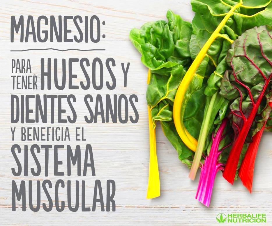 Magnesio para tus huesos