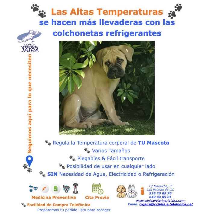 Las Altas Temperaturas se hacen más llevaderas con las colchonetas refrigerantes