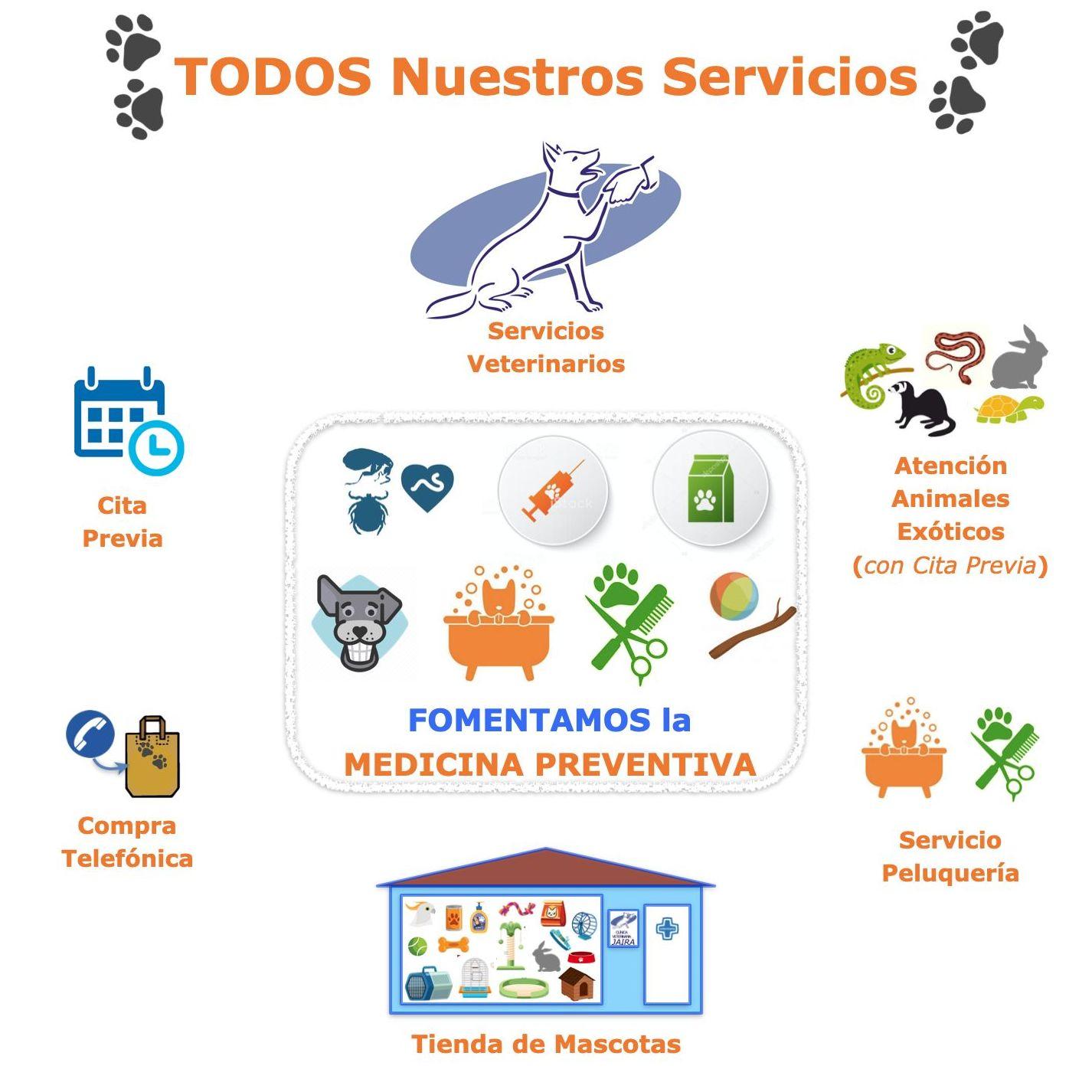 Todos Nuestros Servicios