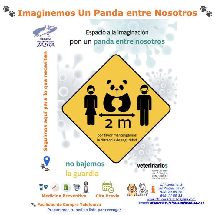 Imaginemos Un Panda entre Nosotros