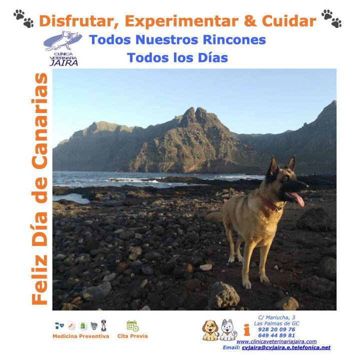 Disfrutar, Experimentar & Cuidar Todos Nuestros Rincones Todos los Días Feliz Día de Canarias