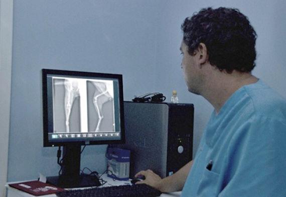 Foto 36 de Veterinarios en  | Clínica Veterinaria Jaira