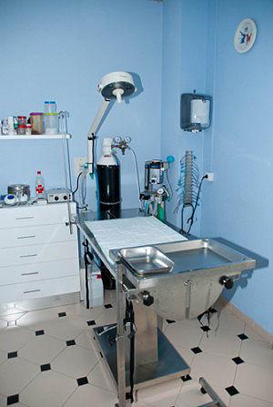 Foto 8 de Veterinarios en Las Palmas de Gran Canaria | Clínica Veterinaria Jaira