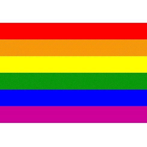 BANDERA LGBT 90 X 140:  de SEX MIL 1