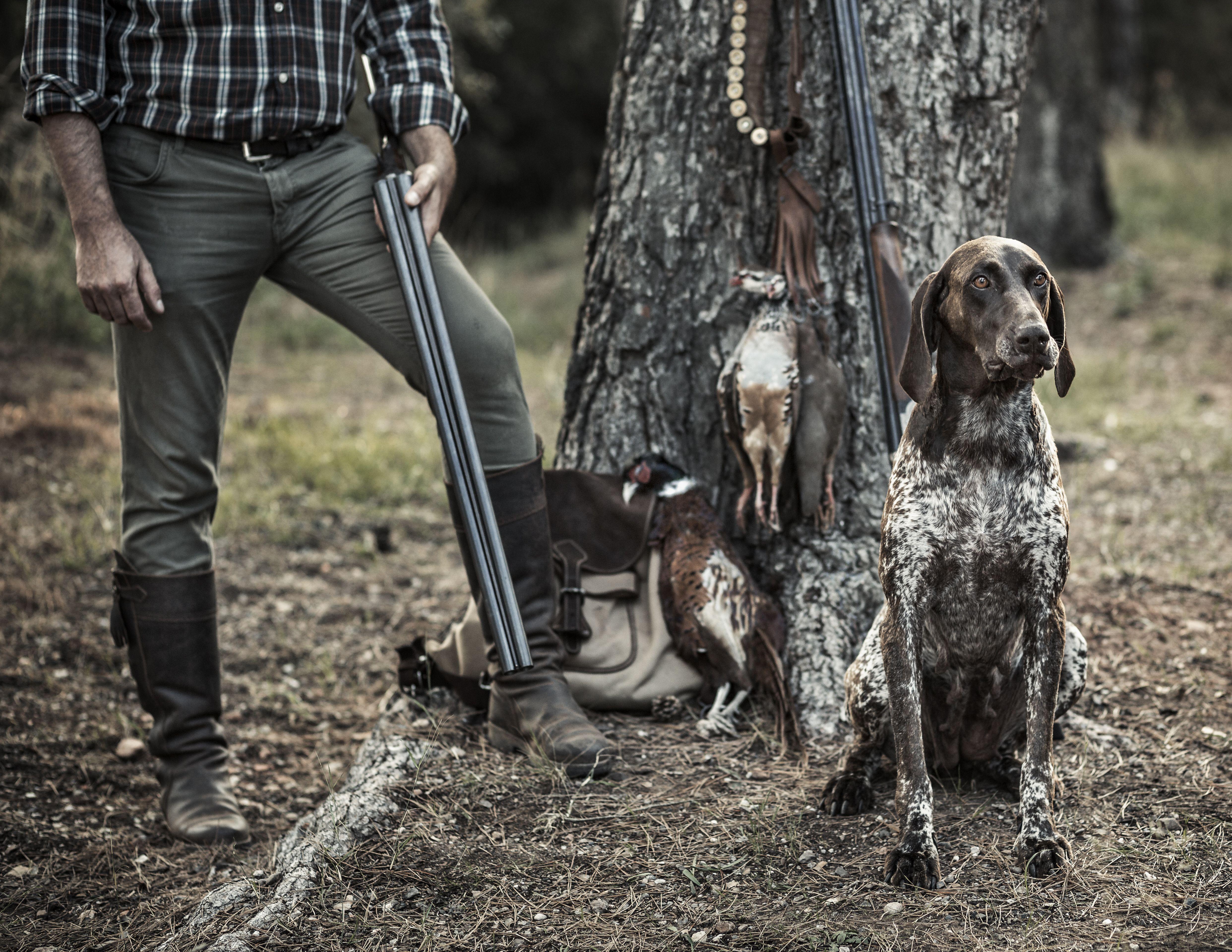 Reconocimientos médicos para licencias de caza en Cáceres
