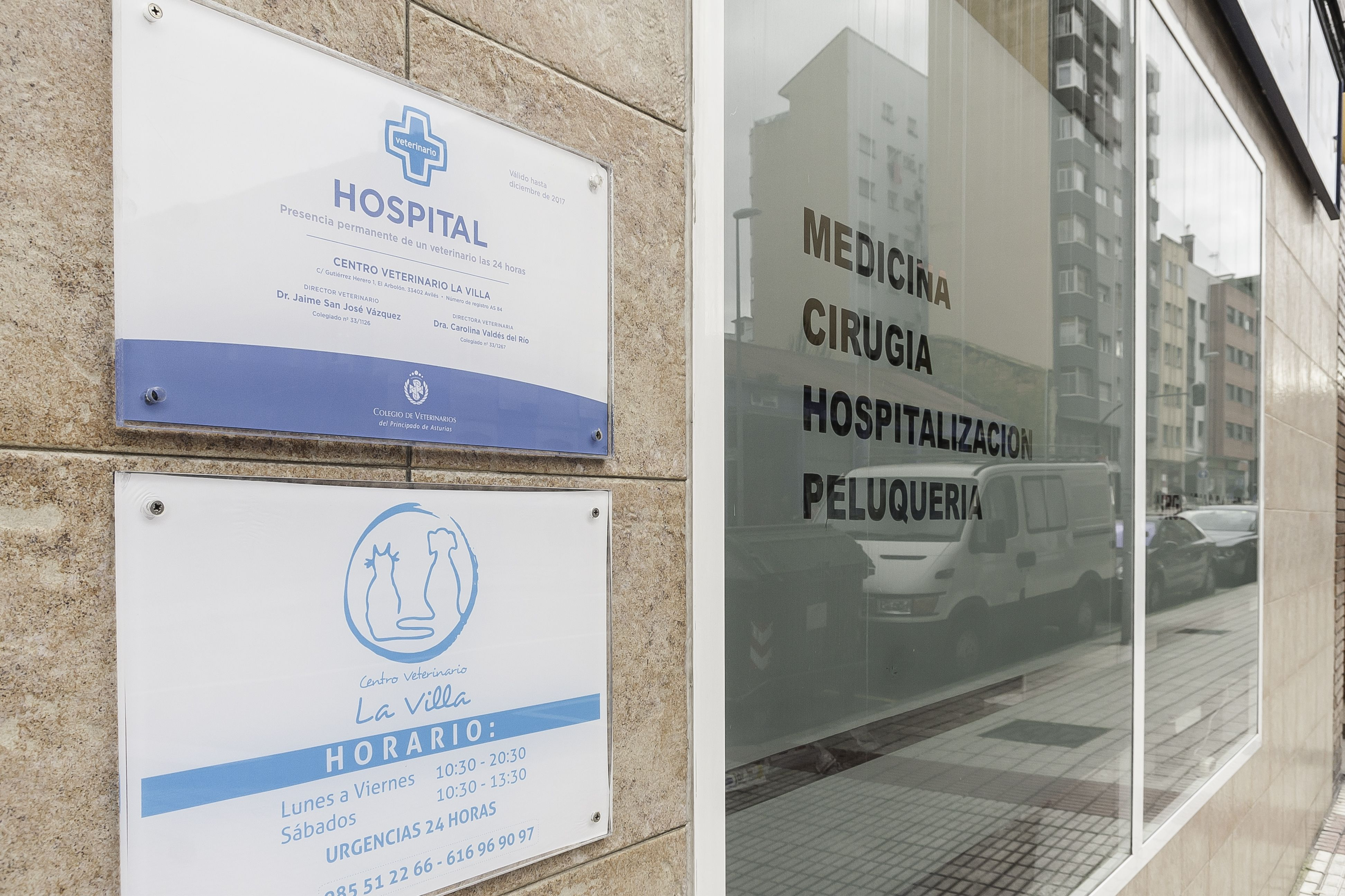 Foto 7 de Veterinarios en Avilés | Centro Veterinario La Villa