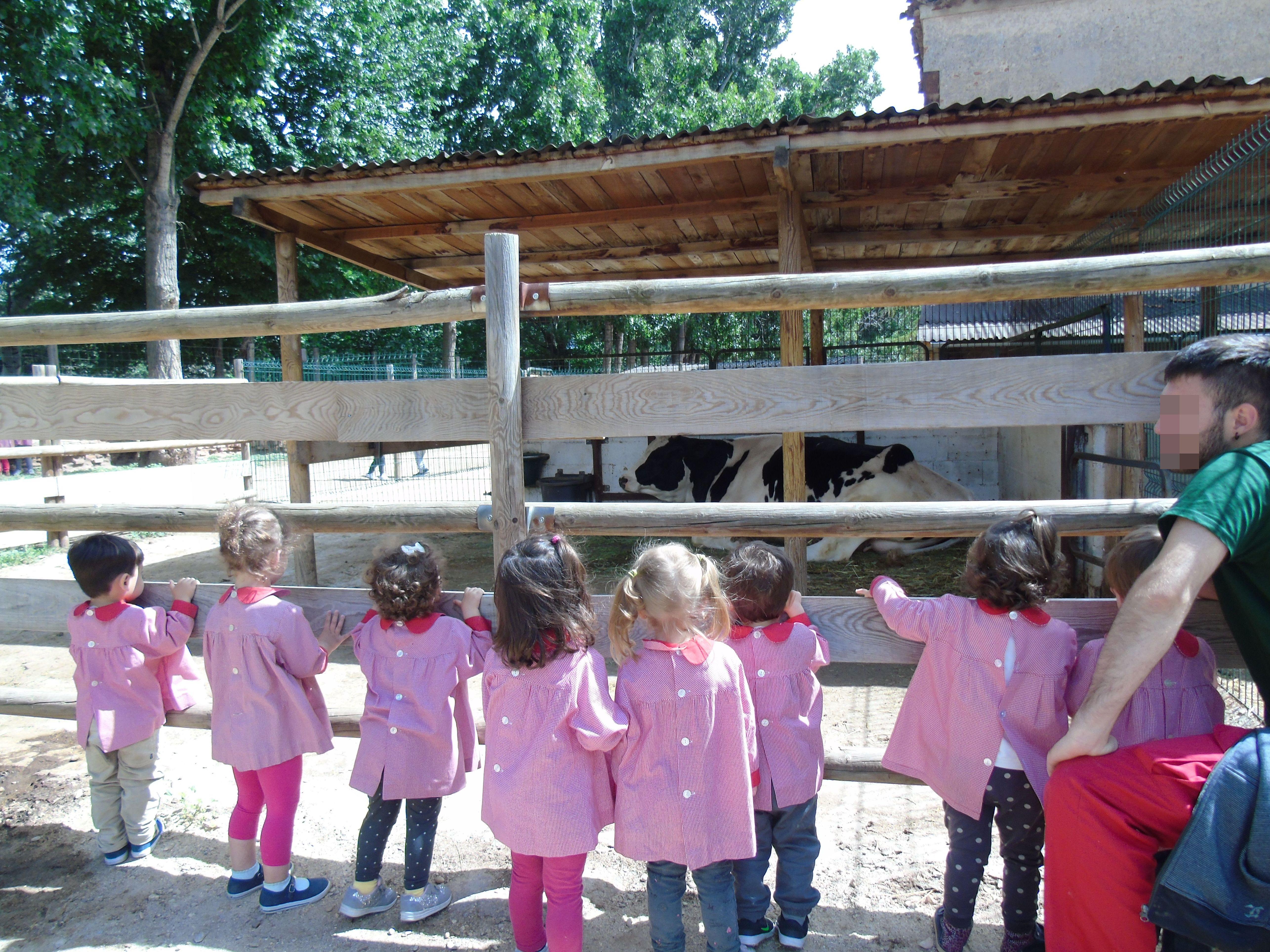 La Escuela Infantil Bilingüe Centro Vida se va  la Granja La Esgaravita.