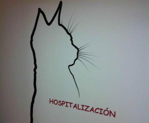 Clínica veterinaria con servicio de hospitalización en Melilla
