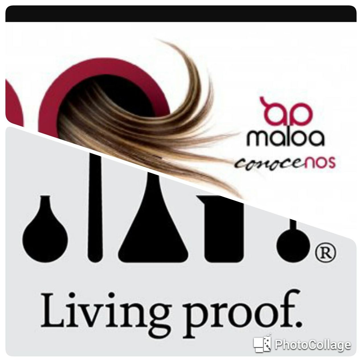 Living Proof con Maloa }}