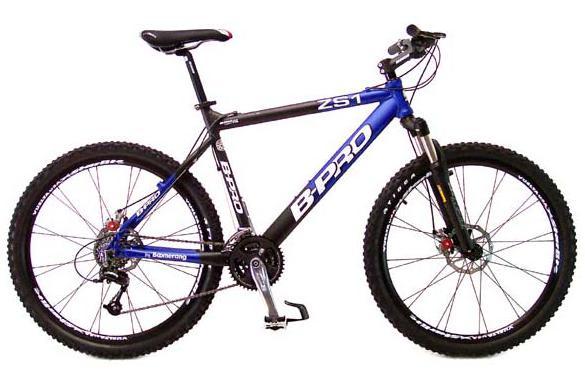 1. Mountain bike / Bike: Charges de Larios Rental