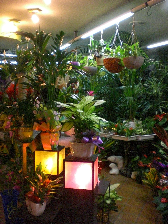Muebles Ramos Fraga - Productos Y Servicios De Florister A Decoflor[mjhdah]https://lookaside.fbsbx.com/lookaside/crawler/media/?media_id=1935068723188750
