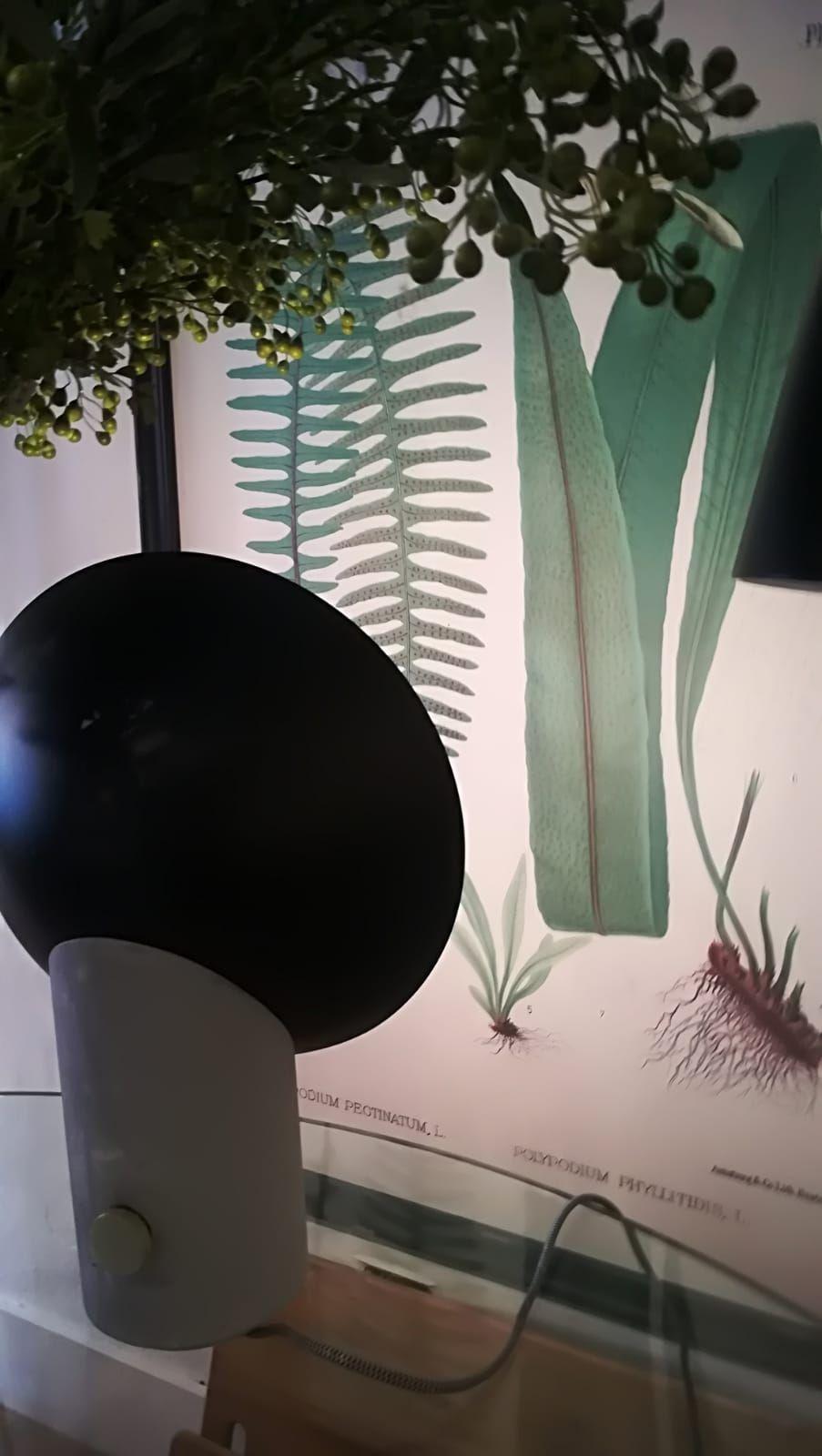 Foto 55 de Tienda de decoración en Las Palmas de Gran Canaria en Las Palmas de Gran Canaria | Lino Decoración