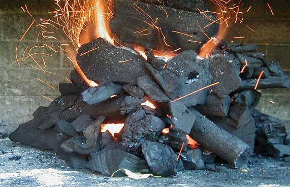 carbón vegetal. Leñas Julio -  Valladolid