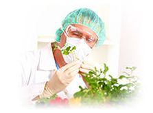 Control sanitario de los alimentos Alava