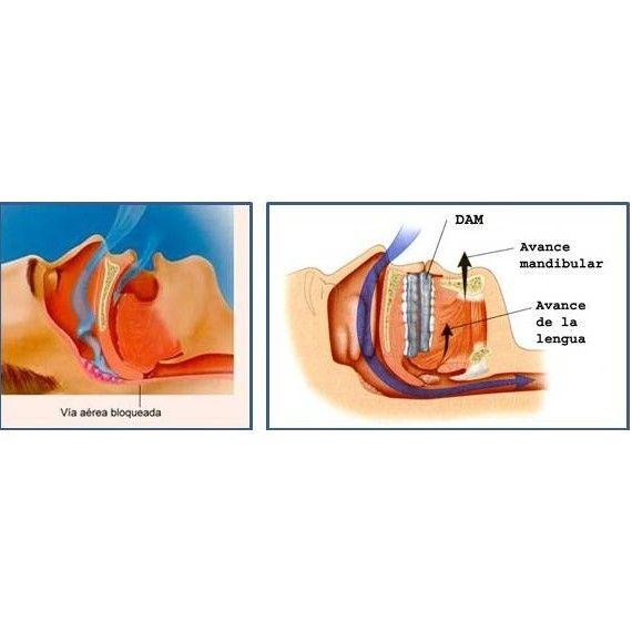 DAM: Servicios de Alser Dental