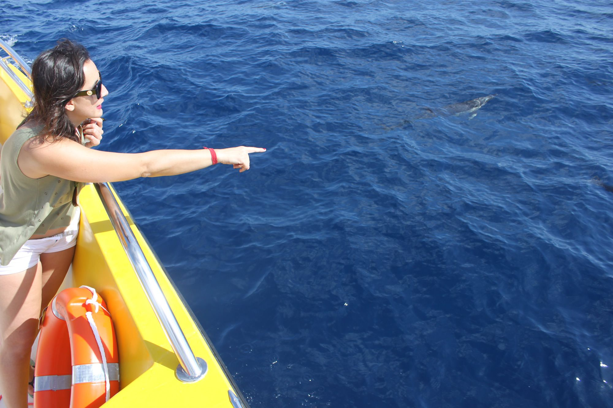 Whale watching in Lanzarote