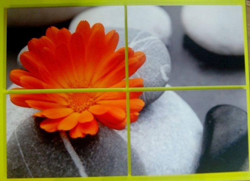Impresión sobre cerámica: Productos y Servicios de Bravo Deco