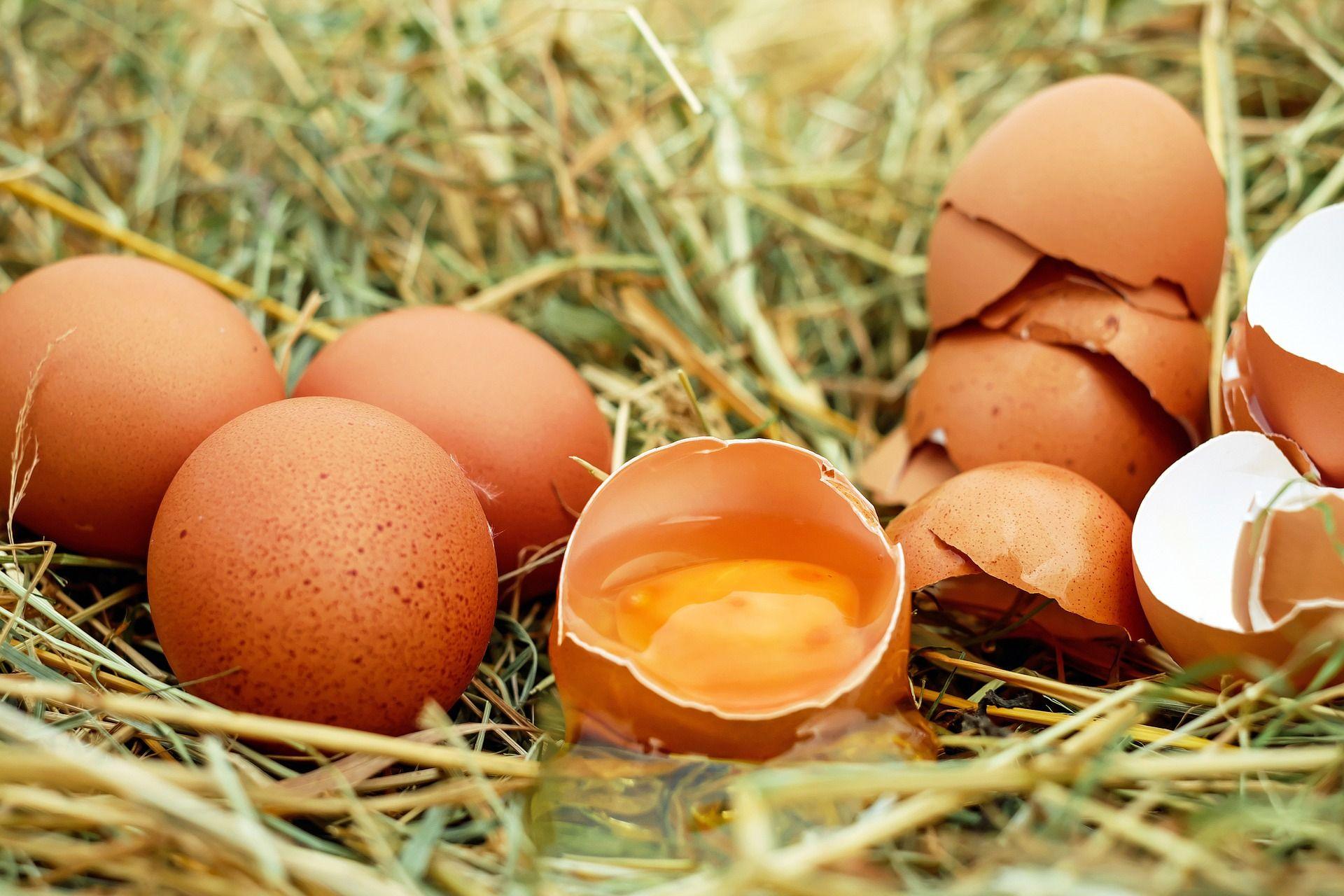 Venta de huevos de diferentes categorías