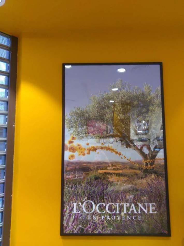 Seguimos con la franquicia L'Occitane, en la tienda del centro comercial plaza norte en san sebastián de los reyes, en la moralejagreen, ubicado en la moraleja, en sol madrid c/ el carmen y argüelles c/. princesa.